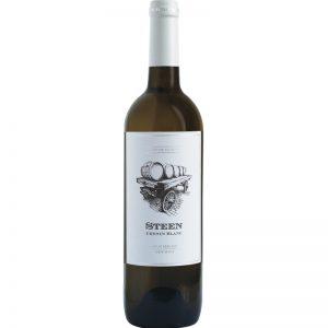 Snow Mountain Artisan Collection Steen Chenin Blanc Good Wine Shop