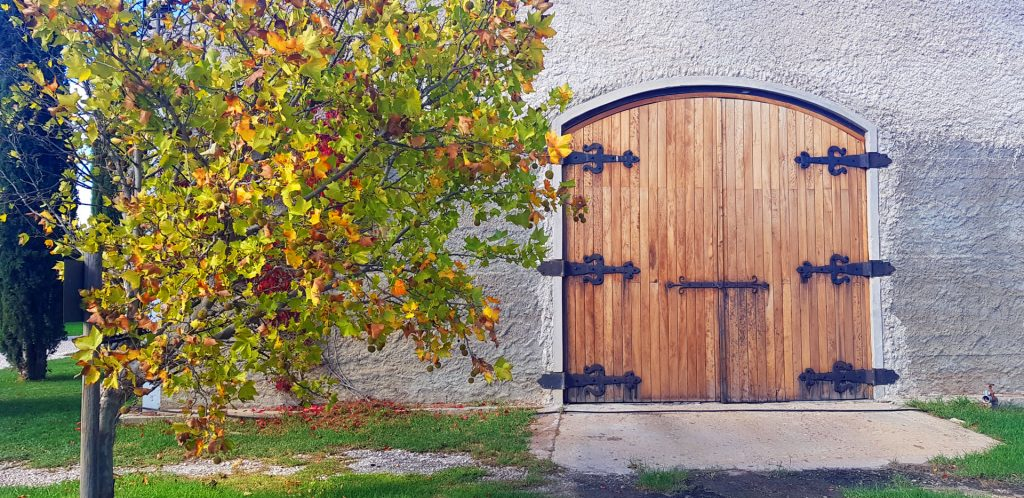 BLOG: BEHIND THE CELLAR DOOR
